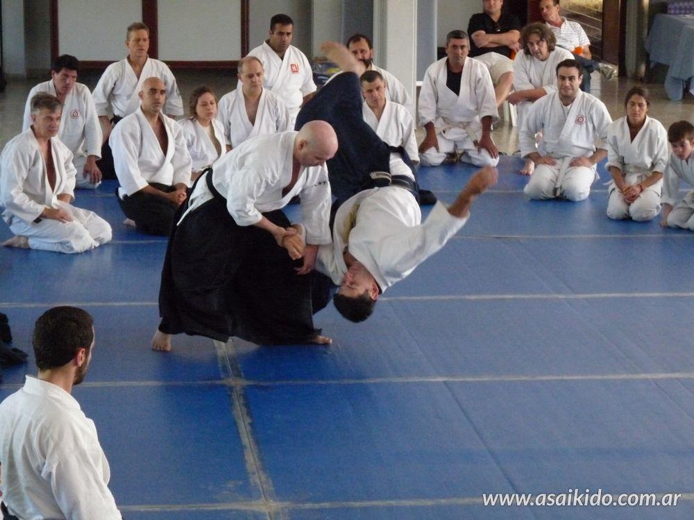 Seminarios de AIkido